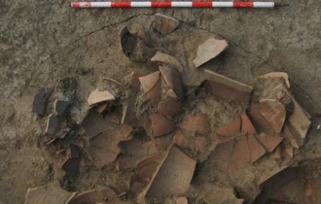cerámica-Baécula