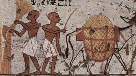 egipto-resaca