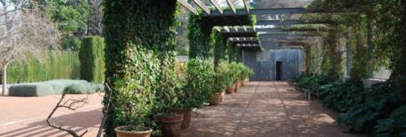 jardin-hesperides