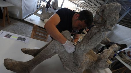 estatuas-humanas-pompeya-6