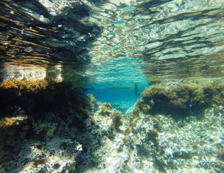 bajo-el-mar