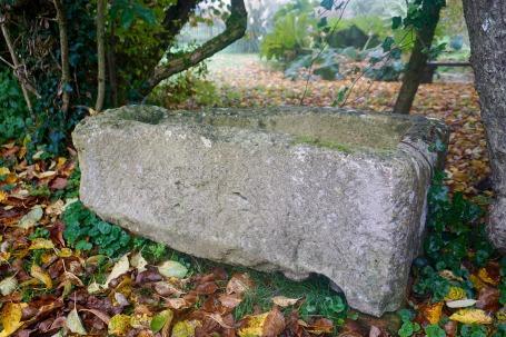sarcofago_NG