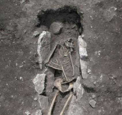 esqueleto_liceo