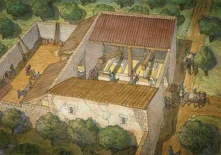 El aceite de oliva - un producto indispensable para la vida del Imperio Romano 3