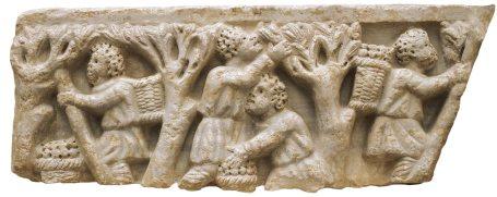 El aceite de oliva - un producto indispensable para la vida del Imperio Romano 4